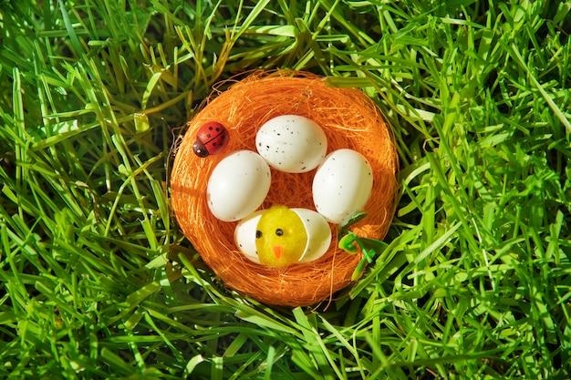 Tarjeta de pascua con un pollito de juguete en un nido de naranjas y una mariquita en la densa hierba verde