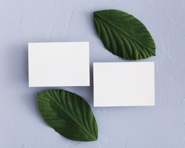 Tarjetas de visita de vista superior con hojas verdes