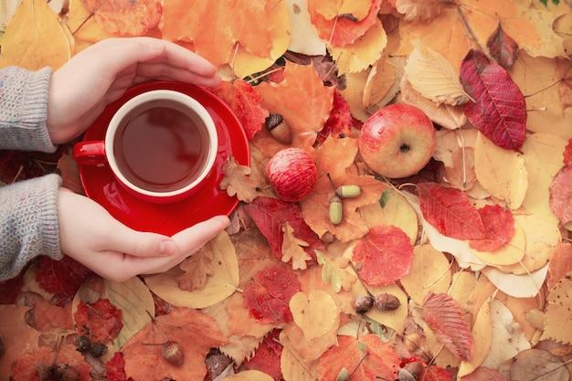 Taza de té en la mano en la superficie de las hojas de otoño