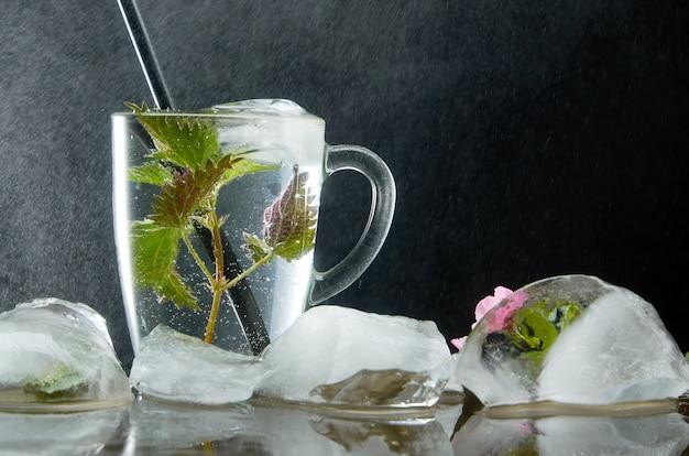 Taza de té de ortiga medicinal con ortiga y hojas de hielo sobre polvo negro y agua