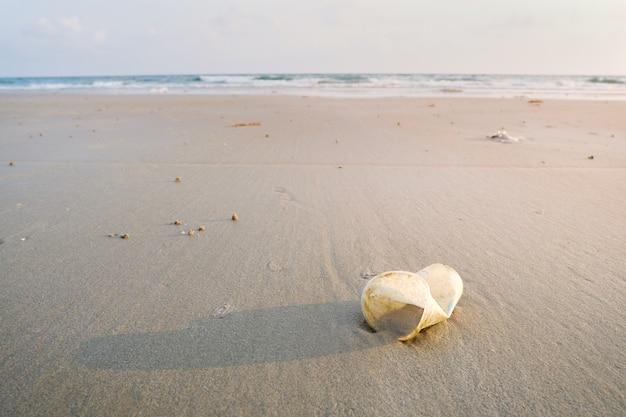 Las tazas de plástico se vierten en la zona costera