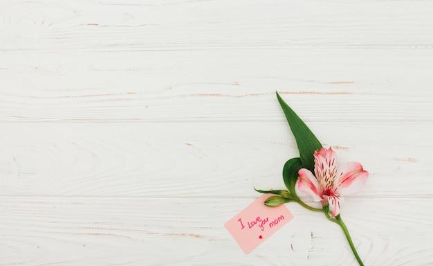 Te amo mamá inscripción con flor rosa.