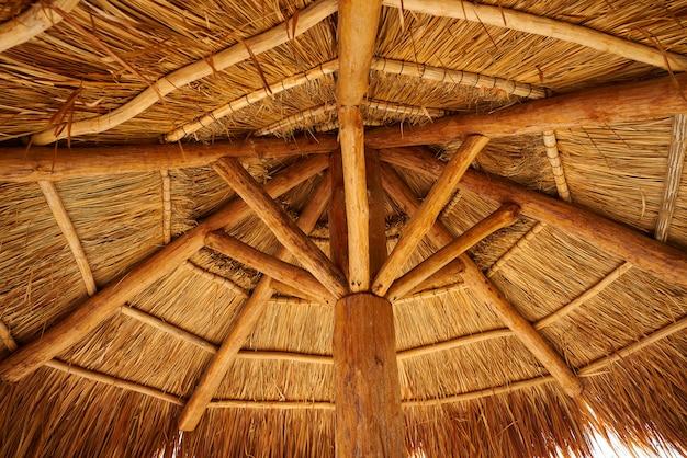 Techo solar de playa caribeña en riviera maya
