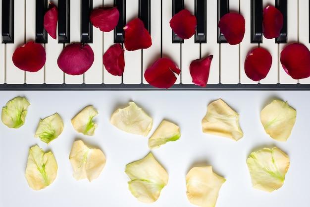 Teclas del piano con pétalos de flores rosas rojas y blancas, aisladas, vista desde arriba