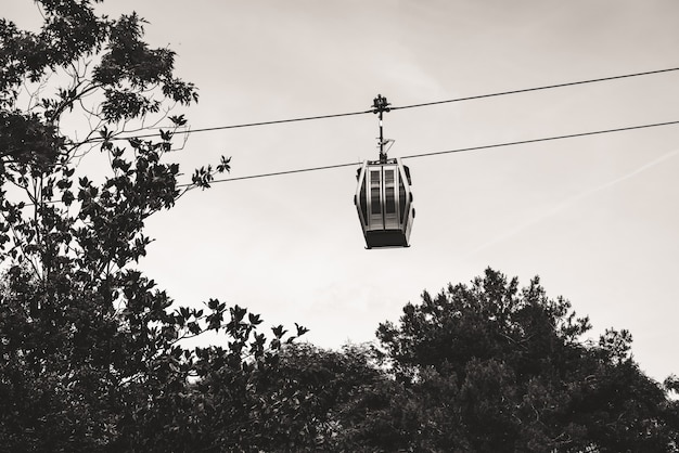 Teleférico suspendido sobre los árboles en un parque