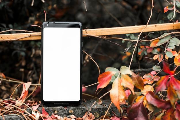 Teléfono inteligente con pantalla blanca en blanco cerca de las hojas de otoño