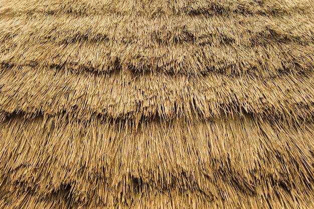 Telón de fondo con detalle de techo de paja