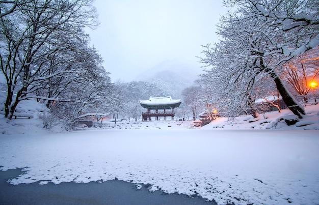 Templo baekyangsa y nieve que cae, montaña naejangsan en invierno con nieve, montaña famosa en corea.paisaje de invierno