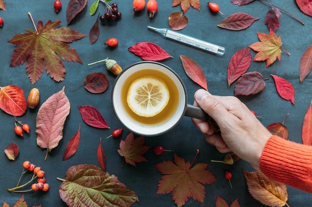 Temporada de gripe, concepto de resfriado. vista superior de la mano masculina sosteniendo una taza de té caliente con limón, hojas de colores otoñales, rosa mosqueta madura, espino y bayas de serbal, termómetro digital, superficie azul marino grunge.