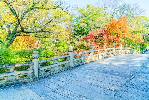 Temporada de otoño en japon