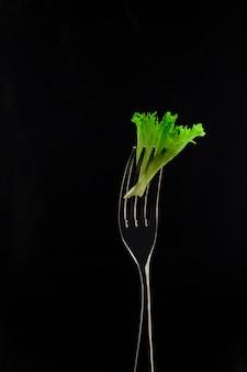 Tenedor y hojas de lechuga en la oscuridad.