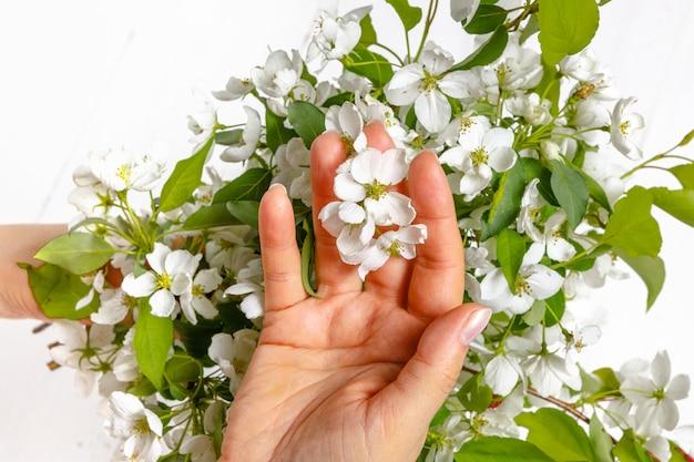 Ternura manos femeninas con flores de primavera. concepto de ternura, cuidado de la piel, las manos de la niña sostienen flores de primavera