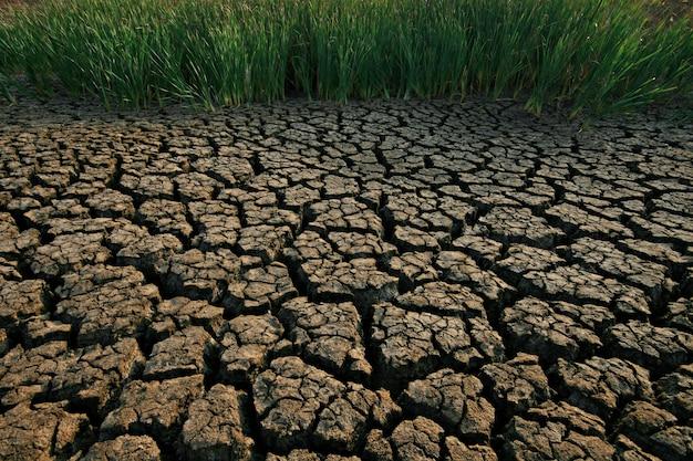 Terreno con tierra seca y agrietada