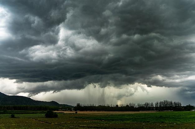 Terrible tormenta de verano sobre plantación