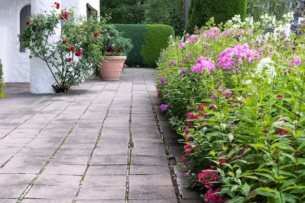 Territorio de la casa decorado con flores phlox, rosas y setos.