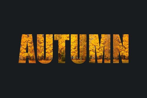 Texto de otoño con un elemento de diseño de árboles de colores brillantes con follaje de color amarillo anaranjado. concepto de caída sobre un fondo oscuro