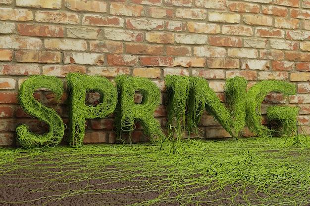 Texto de primavera de hiedra verde que crece sobre fondo de pared de ladrillo, representación 3d