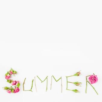 Texto de verano hecho con rosas y tallo sobre fondo blanco