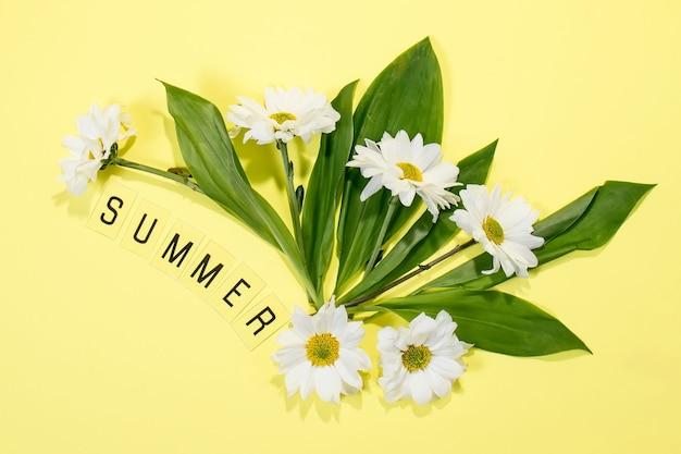 Texto verano de letras y flores de manzanilla de campo sobre fondo amarillo