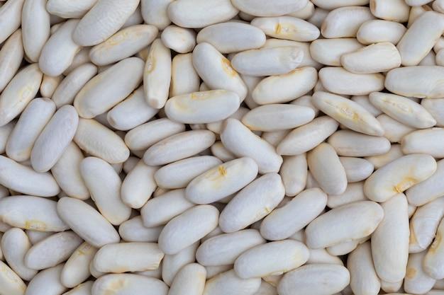 Textura de alubias blancas (fabes) crudas (legumbres)