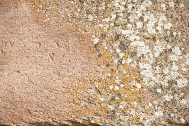 La textura del arte y de la cultura antiguos de piedra viejos en phanom sonó parque nacional en tailandia.