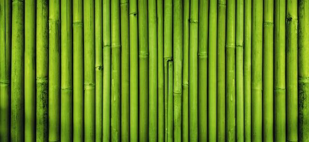Textura de cerca de bambú verde, fondo de bambú