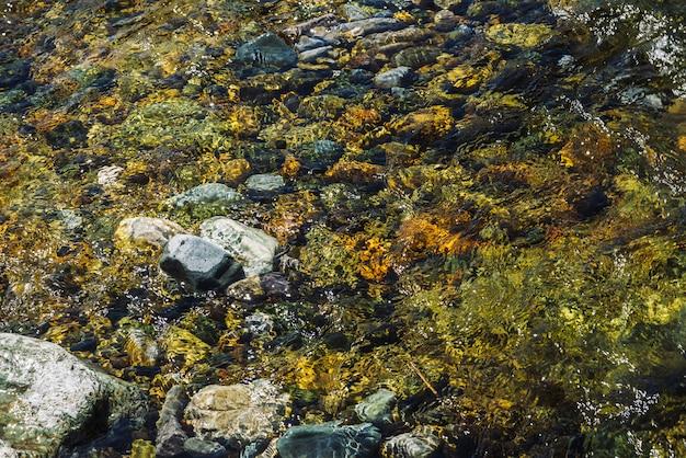 Textura detallada multicolor del fondo pedregoso del arroyo transparente de cerca. agua limpia en el arroyo de montaña. fondo colorido de piedras lisas en la corriente del río con copyspace.
