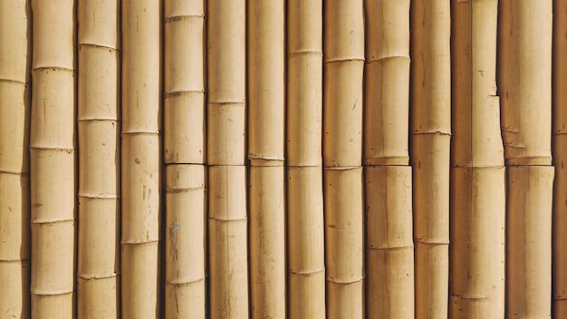 Textura de fondo de bambú