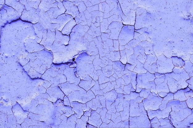 La textura del fondo coloreó la pared púrpura en la pintura agrietada vieja