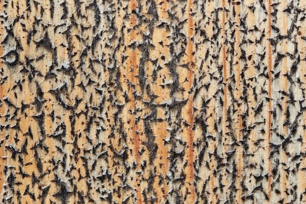 Textura del fondo de la madera vieja cubierta con la pintura descolorada y agrietada.