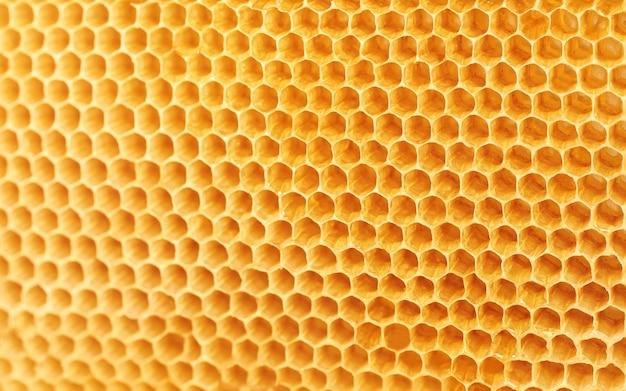 Textura de fondo y patrón de panales de cera de una colmena de abejas.