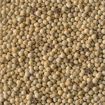 Textura de fondo de semillas de pimienta blanca