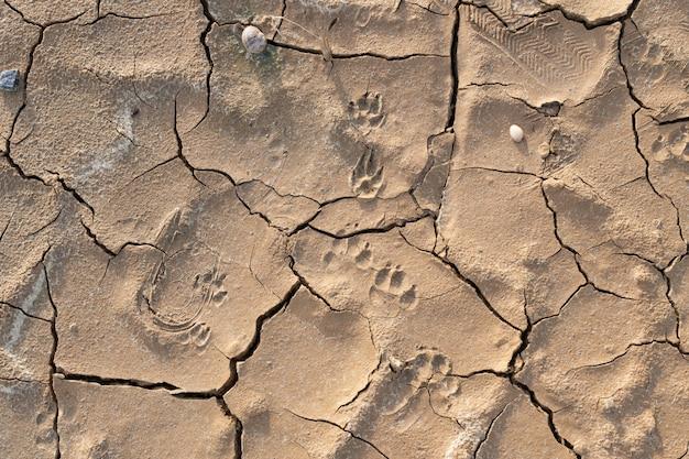 Textura de fondo de tierra agrietada seca