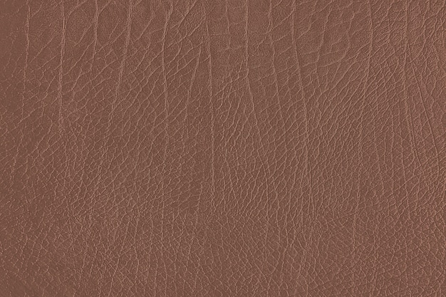 Textura de grano de cuero marrón