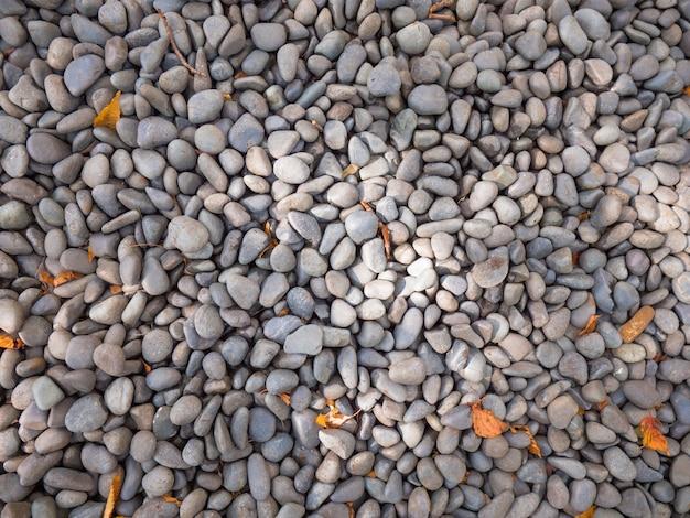 Textura de guijarros con hojas de amanecer y otoño