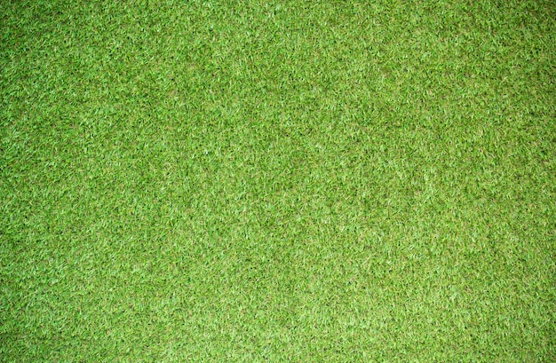 Textura de hierba para el fondo