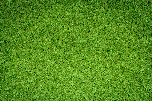 La textura de la hierba verde se puede utilizar como fondo