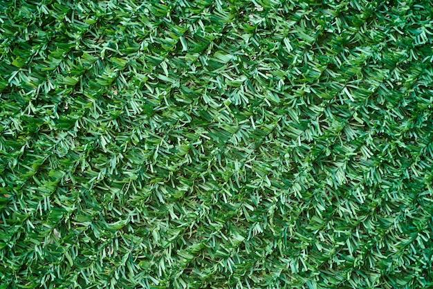 Textura de hierba verde