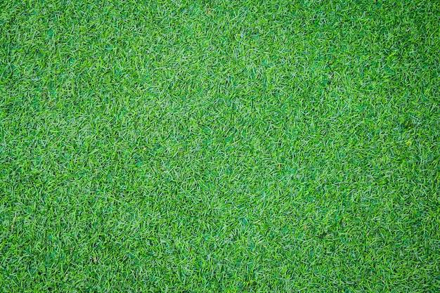 Textura de la hierba verde