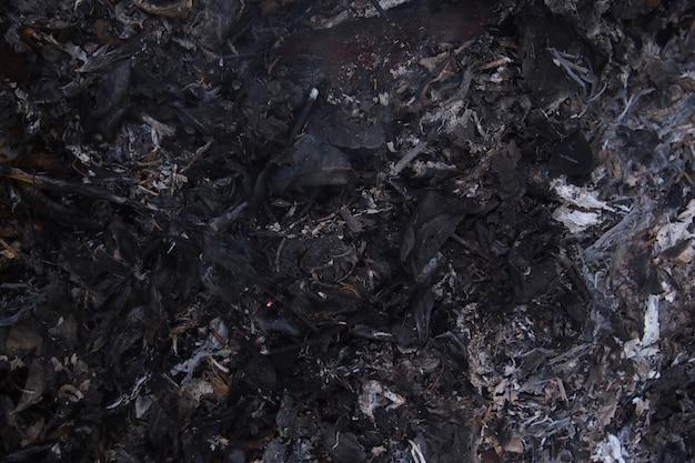Textura de hoja de carbón negro