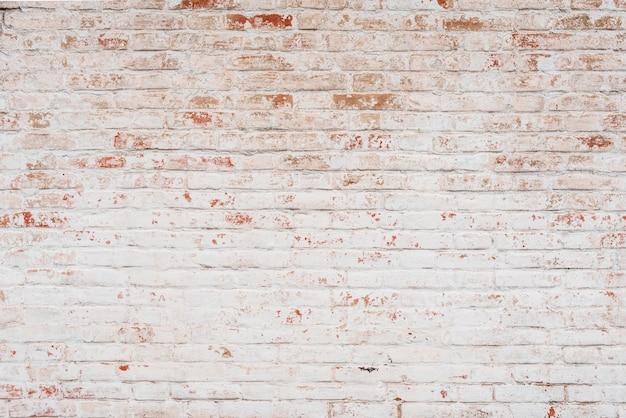 Textura. ladrillo. se puede utilizar como fondo.