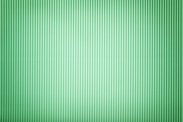 Textura del libro verde acanalado con la ilustración, macro.