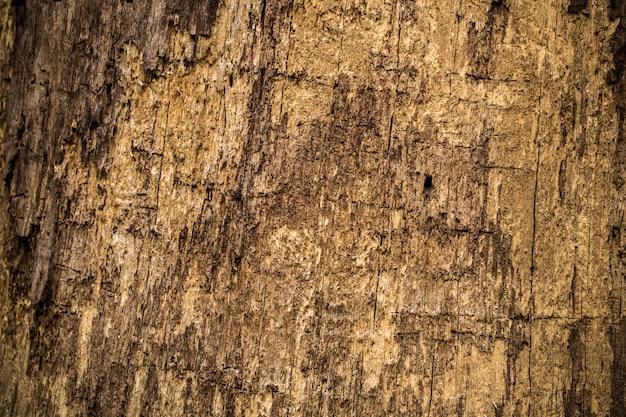 Textura de madera natural vieja