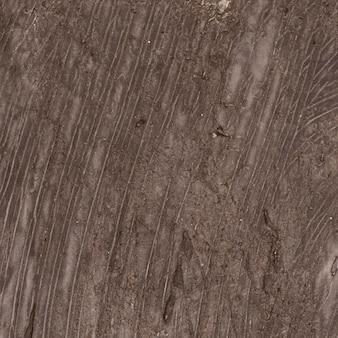 Textura marrón monocromática vacía