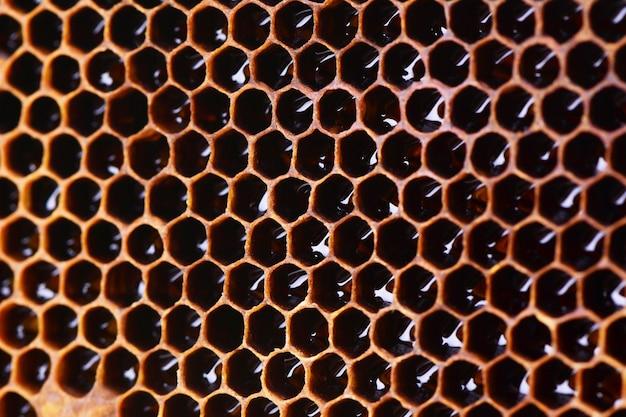 Textura de panales de abeja