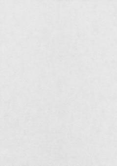 Textura de papel blanco natural. fondo de pantalla limpio