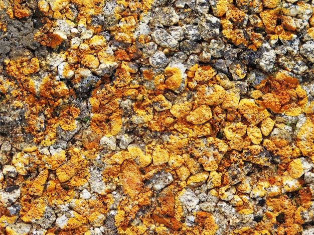 Textura de piedra al aire libre