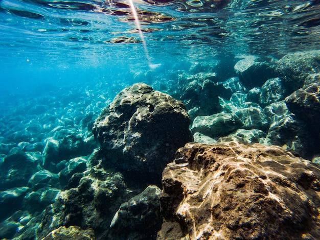 Textura de piedras, tierra, fondos marinos con arrecifes de coral y algas bajo el agua azul verdosa.