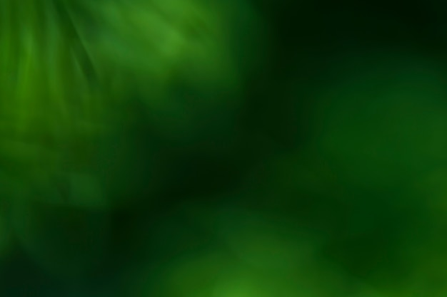 Textura de plantas borrosas de cerca