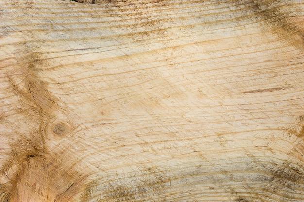 La textura del primer de los registros partidos. textura de madera áspera